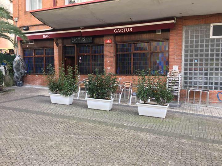 Egiako Cactus taberna, Plaza Berrin. (Argazkia: Irutxuloko Hitza)