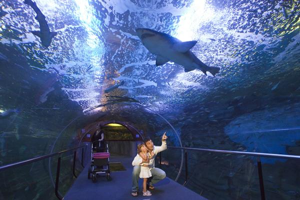 Donostiako Aquariuma
