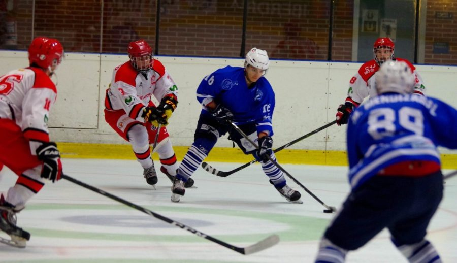 txuri urdin izotz hockeya
