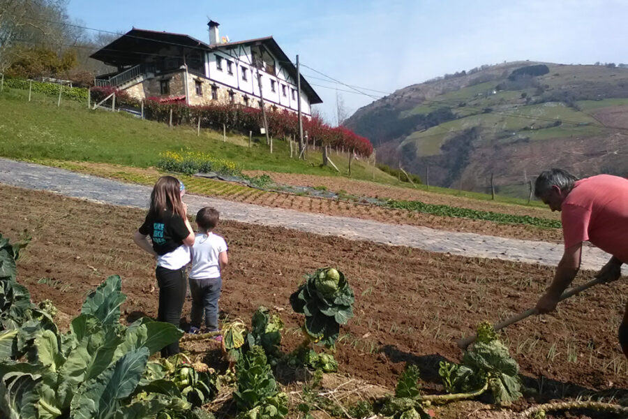Gipuzkoan nekazaritza eredu ekologikoan ekoiztutako produktuak saltzen dituzte. (Argazkia: Sareko)