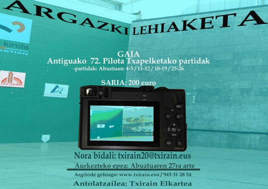 Argazki_lehiaketa