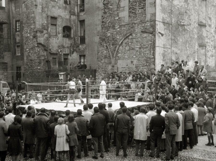 boxeoa trinitate plaza